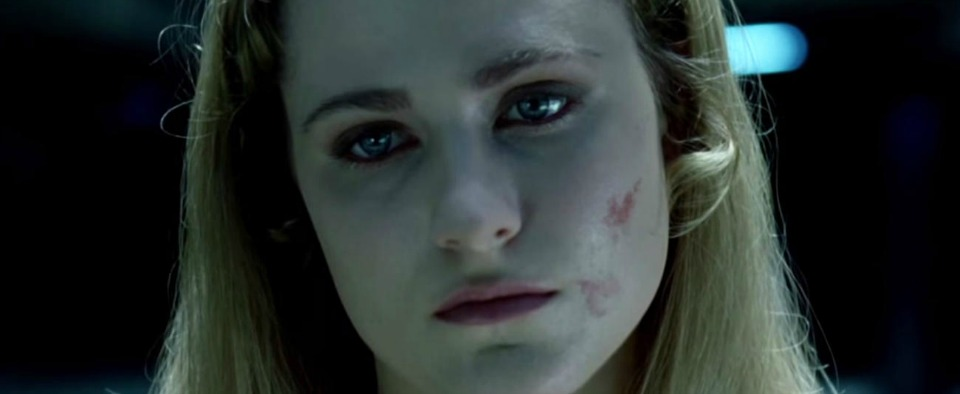 westworld serie tv evan rachel wood