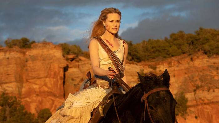 the Passenger Evan Rachel Wood Westworld finale